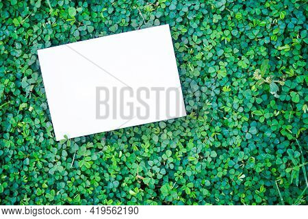 Flat Lay Blank White Paper Mock Up On Leaves Green With Copy Space. For Add Text Message. Saving  Pr
