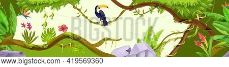 Jungle Forest Nature Background, Wood Vector Exotic Landscape, Toucan, Green Leaves, Tree, Flower, S
