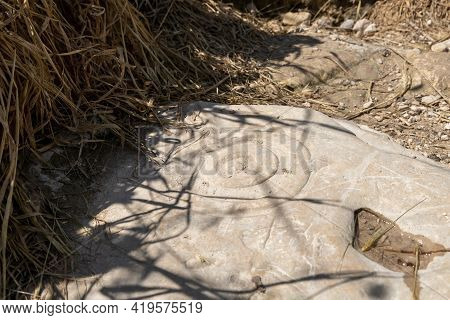 The Stone With Ritual Signs Carved On It Near The Excavations Of The Ancient Maresha City In Beit Gu