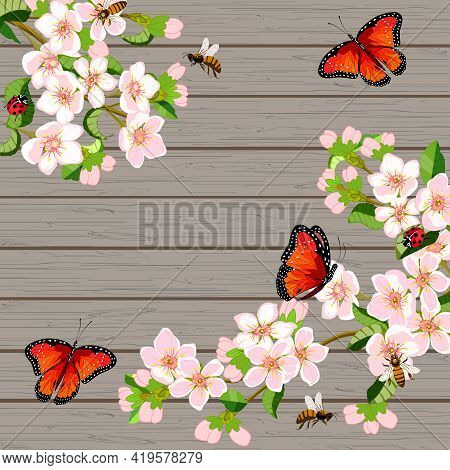 Blooming Cherry On A Wooden Background.blossoming Cherry Branches And Insects On A Wooden Background