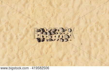 Concept conceptual stones on beach sand handmade symbol shape, golden sandy background, minus sign. 3d illustration metaphor for education, nature, sunny and tropical, summer, sunny, seaside, tropical