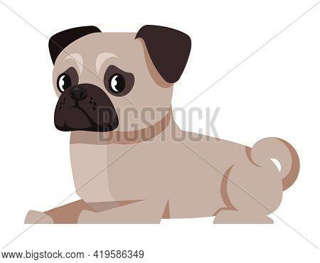 Lying Pug Side View. Cute Pet In Cartoon Style.