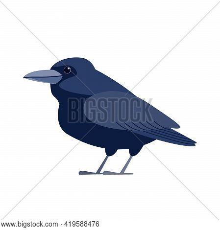 Crow Raven Bird. Black Bird Cartoon Flat Style Beautiful Character Of Ornithology, Vector Illustrati