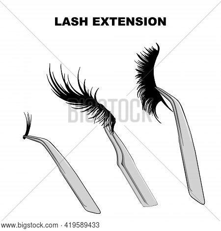 Eyelash Types, False Eyelashes Extension Procedure. Woman Eye With Long Eyelashes. Doll Lashes In Ve