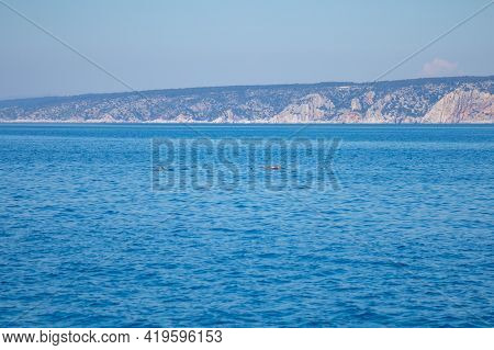 Group Of Wild Dolphins In Adriatic Sea Near Croatia Cost