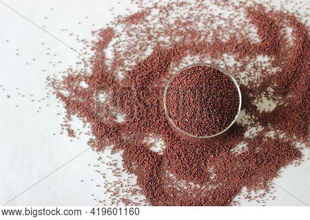 Eleusine Coracana Grain Or Finger Millet, Also Known As Ragi In India, Kodo In Nepal.