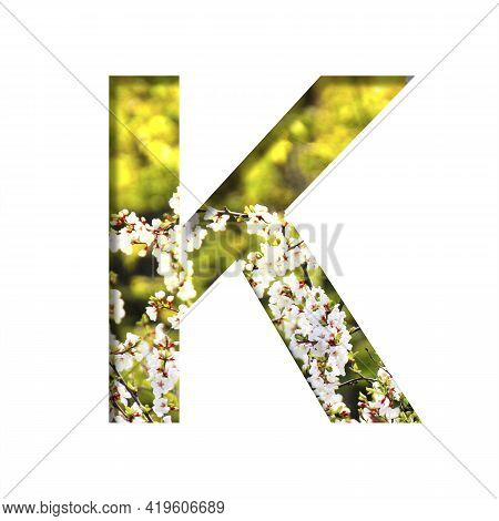 Spring Sunny Font. The Letter K Cut Out Of Paper On The Background Of Blooming Cherry On A Sunny Spr