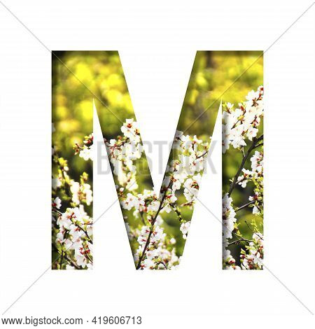 Spring Sunny Font. The Letter M Cut Out Of Paper On The Background Of Blooming Cherry On A Sunny Spr