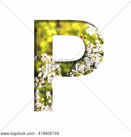 Spring Sunny Font. The Letter P Cut Out Of Paper On The Background Of Blooming Cherry On A Sunny Spr
