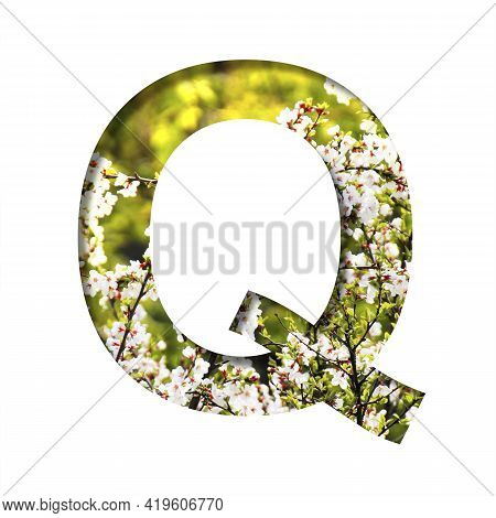 Spring Sunny Font. The Letter Q Cut Out Of Paper On The Background Of Blooming Cherry On A Sunny Spr