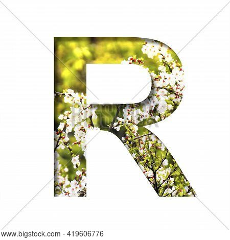 Spring Sunny Font. The Letter R Cut Out Of Paper On The Background Of Blooming Cherry On A Sunny Spr