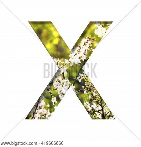 Spring Sunny Font. The Letter X Cut Out Of Paper On The Background Of Blooming Cherry On A Sunny Spr