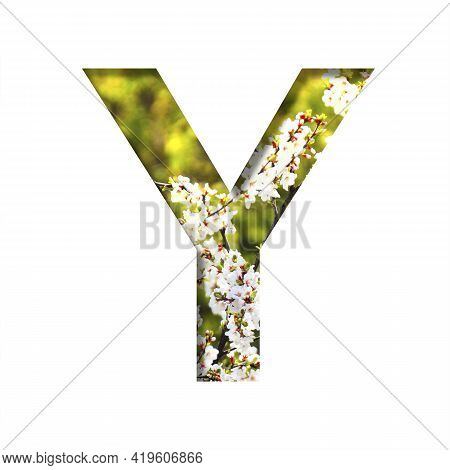 Spring Sunny Font. The Letter Y Cut Out Of Paper On The Background Of Blooming Cherry On A Sunny Spr