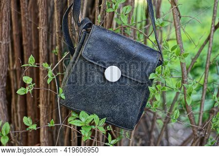 Old Black Leather Bag Hanging On Brown Branches Of A Bush With Green Leaves Outside In The Garden