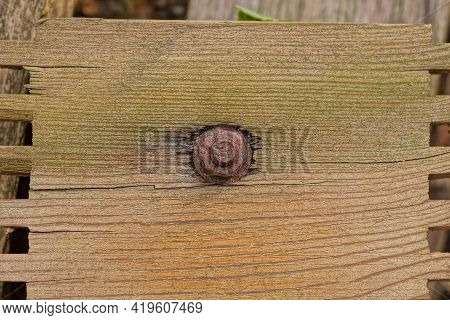 One Brown Iron Rusty Bolt With Nut In Wood Plank
