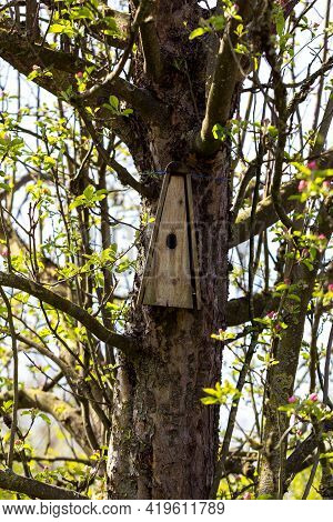 A Triangular Wooden Homemade Birdhouse Nailed To A Apple Tree In Springtime. The Hole Of The Mounted