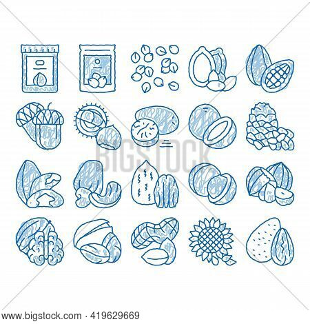 Nut Food Different Sketch Icon Vector. Hand Drawn Blue Doodle Line Art Peanut And Almond, Chestnut A
