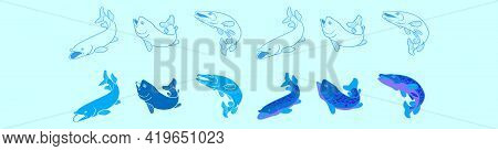 Set Of Pike Fish Cartoon Icon Design Template With Various Models. Modern Vector Illustration Isolat