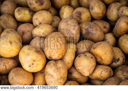 Fresh Organic Brown Unpeeled Potatoes On A Fresh Market, Background. Potato Texture. Lots Of Organic