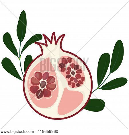 A Cut Of A Juicy Pomegranate With Branches . Pomegranate Seeds Abstract