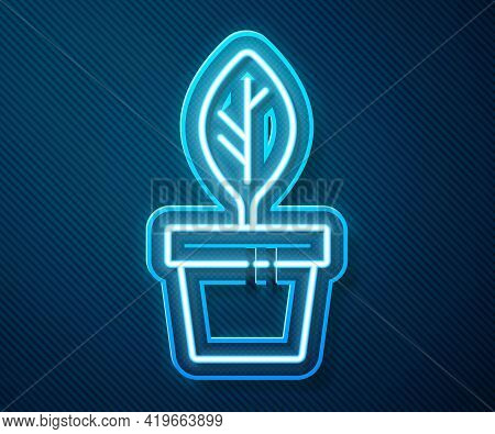 Glowing Neon Line Plant In Pot Icon Isolated On Blue Background. Plant Growing In A Pot. Potted Plan