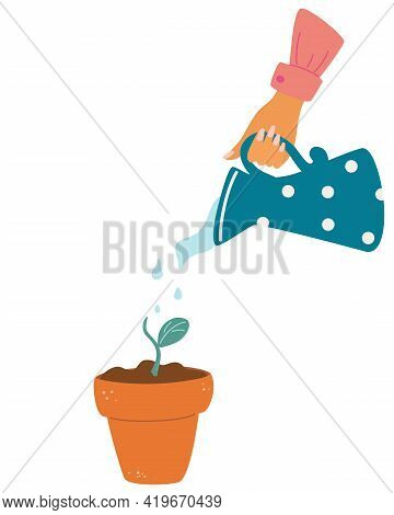 Hand Holding Watering Can Watering Plant. Pot With Plant Or Flower. Hand Holding Can Watering For Gr