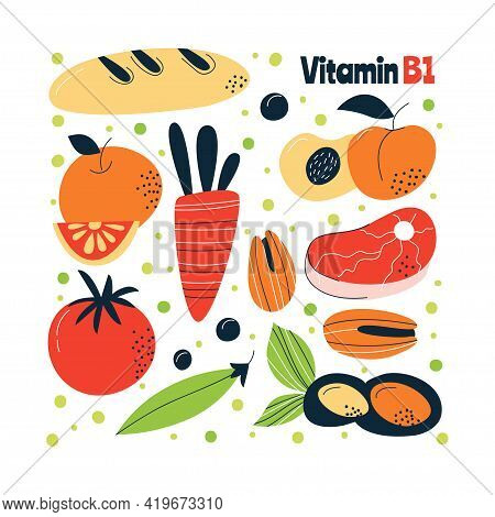 The Main Food Sources Of Vitamin B1. Healthy Food Concept.