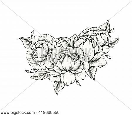 Hand Drawn Peony Bouquet Isolated On White, Floral Botanical Foliage With Peony Blossom And Leaves,