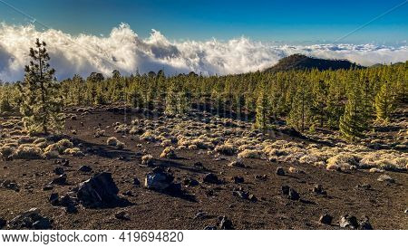 Peaks of Teide and Pico Viejo volcanoes at sunset seen from the Samara crater. Teide National Park, Tenerife, Canary Islands, Spain
