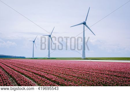 Offshore Windmill Farm In The Ocean Westermeerwind Park, Windmills Isolated At Sea On A Beautiful Br