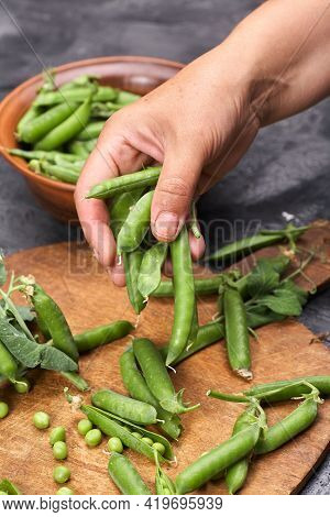 Green Peas, Pods And Peas On A Loft Gray Background. Woman Holding Green Peas In Her Hands