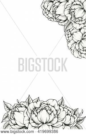 Vintage Peony Flowers Card, Botanica Card Illustration With Hand Drawn Foliage And Peonies, Romantic