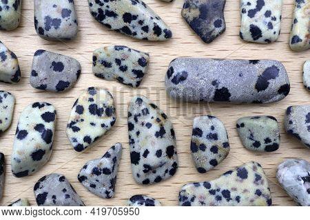 Dalmatian Jasper Rare Jewel Stones Texture On Light Varnished Wood Background