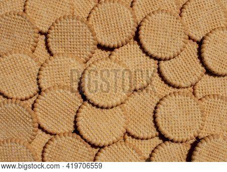 Bunch Of Sugar Coated Hortbread Cookie Snacks Treats Arranged Round Cookies
