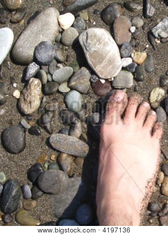 Foot And Pebbles