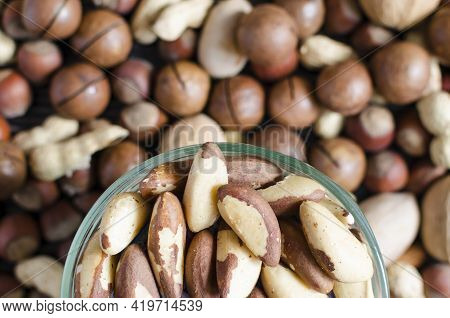 Brazil Nut In A Transparent Plate On The Background Of A Scattering Of Various Nuts Close-up