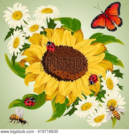 Chamomile And Sunflowers In Illustration.chamomiles, Sunflowers And Insects On A Colored Background
