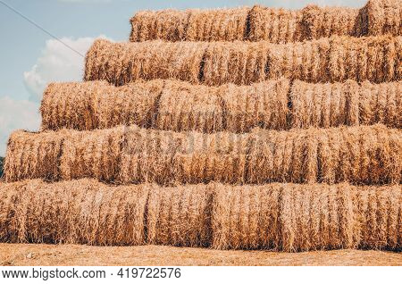 Landscape With Bales Of Straw In Summer, Stubble Field.