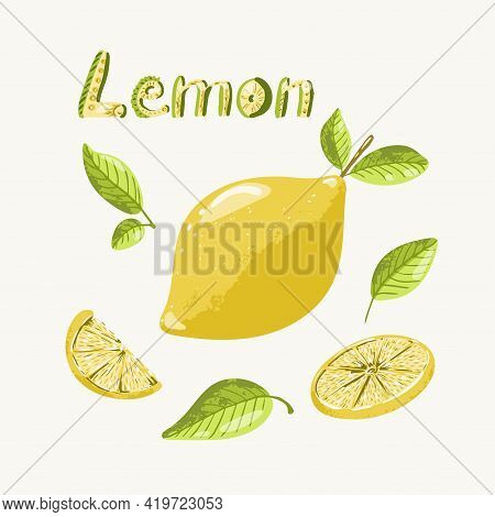 Lemon Set In Hand Drawn Vintage Style. Ripe Whole Lemon With Leaves, A Circle Of Citrus, And Slice O