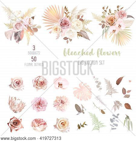 Trendy Dried Palm Leaves, Blush Pink And Rust Rose, Pale Protea, White Ranunculus