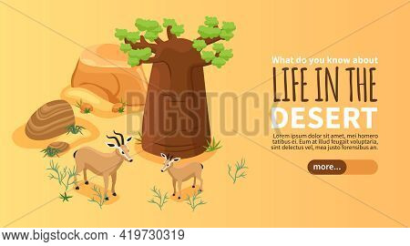 Isometric Banner With Desert Landscape And Two Gazelles On Yellow Background 3d Vector Illustration