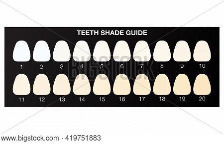 Teeth Whitening Shade Guide, Dental Colour Chart. Flat Illustration Vector