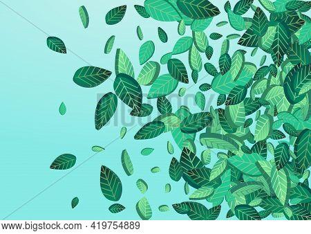 Mint Foliage Transparent Vector Blue Background