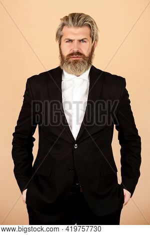 Bearded Man Suit Fashion. Luxury Classic Suits, Vogue. Man In Classic Suit, Shirt And Tie. Business