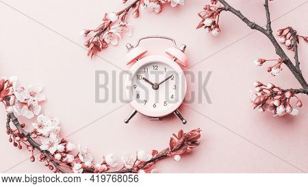 Spring Time Flowers Blossom And May Flowers With Alarm Clock On Pink. For Banner, Branches Of Blosso