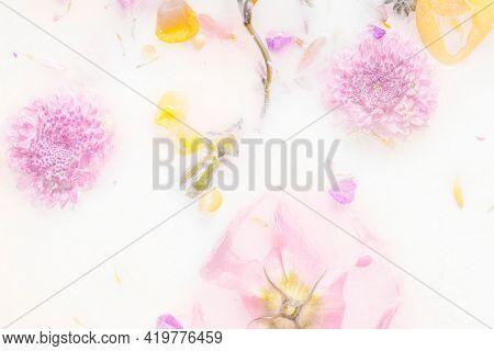 Mums flowers in a milk bath