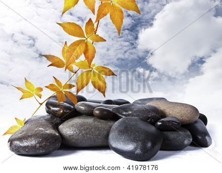 Yellow leaves and stone on the sky bacground