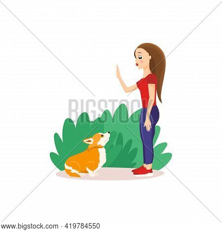 Vector Illustration In Cartoon Style Isolated On White Background. Girl Training Welsh Corgi In The
