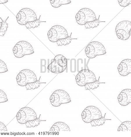 Hand Drawn Garden Snail Engraved Seamless Pattern In Vintage Style. Mollusk With Leaves Illustration