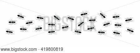 Line Of Working Ants. Anthill Symbol. Flock Of Black Ants. Vector Illustration Isolated On White